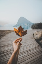 Cropped image of person holding autumn leaf against sky